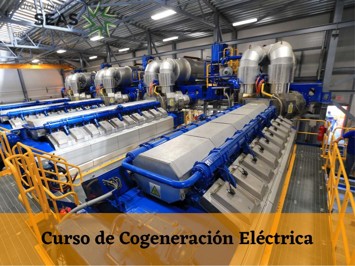 Curso de Cogeneración Eléctrica