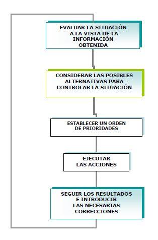 Organigrama de Acciones y Decisiones Generales.SOPEP