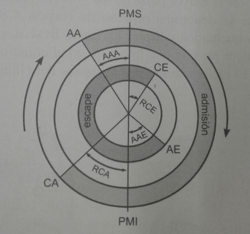 Diagrama de distribución práctico
